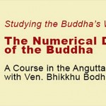 A Course in the Anguttara Nikaya with Ven. Bhikkhu Bodhi