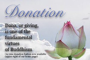 Online  Donation Button to BAUS now available (upper right of home page)